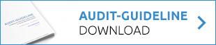 audit-guideline-download_long